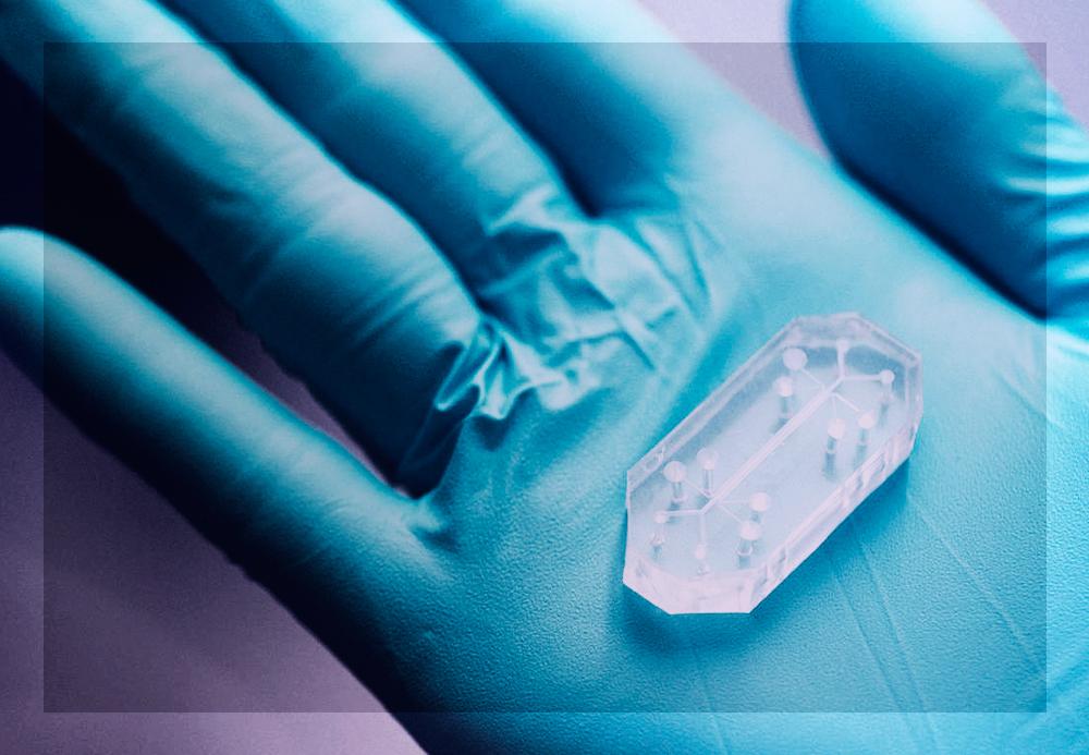 Instituto americano lança chip que promete dar um fim aos testes em animais