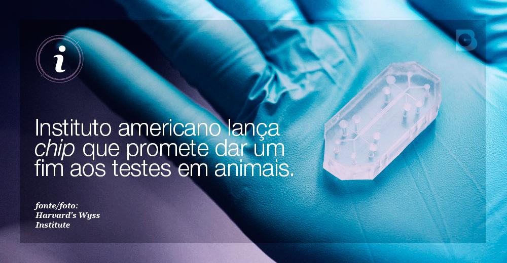 testes-em-animais