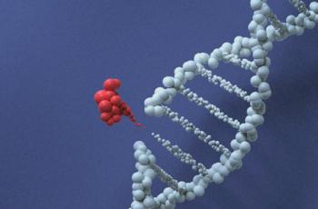 Patrimônio genético: o que é e qual a sua importância para o P&D